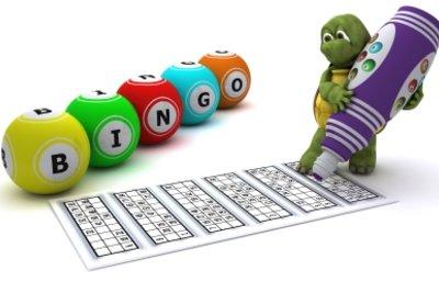 Spiele Bingo